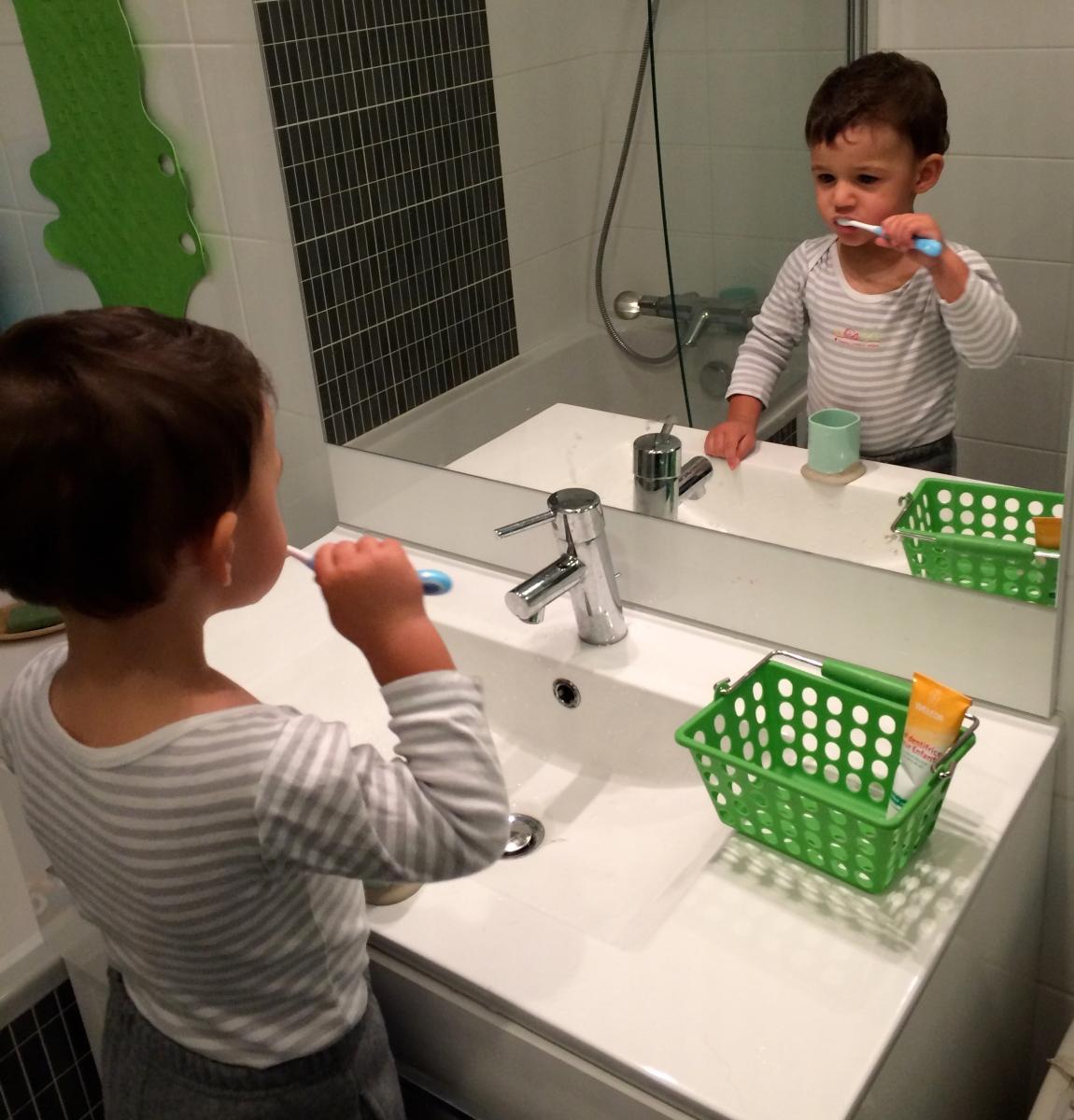 L'Activité Montessori du Jour : se brosser les dents