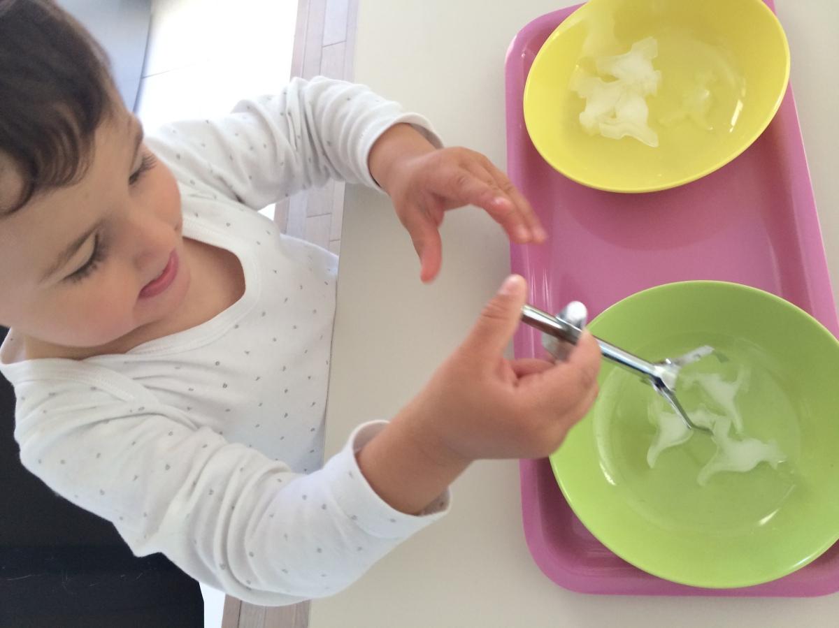 L'Activité Montessori du Jour : pince à glaçons