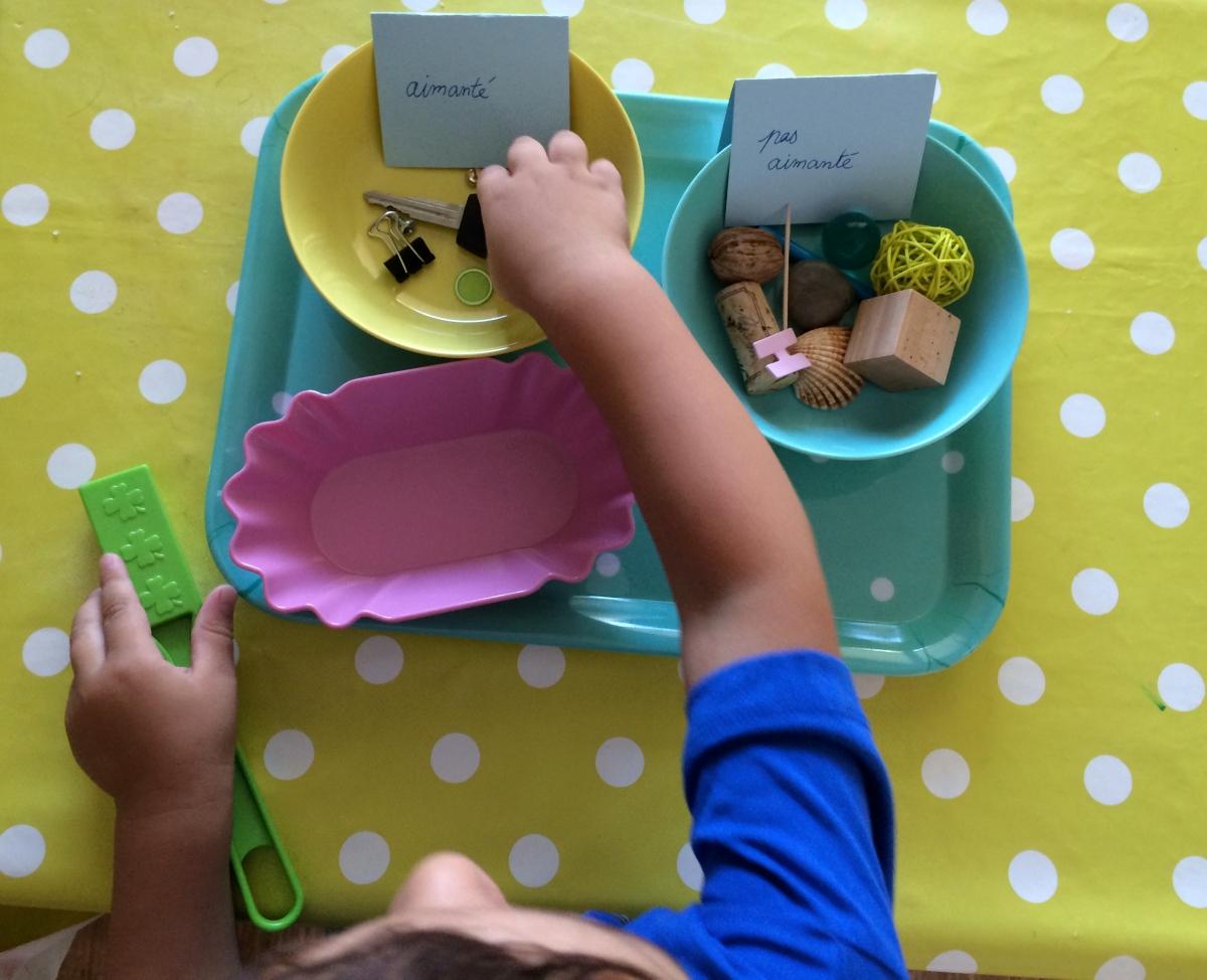 L'Activité Montessori du Jour : Aimanté ou pas ?