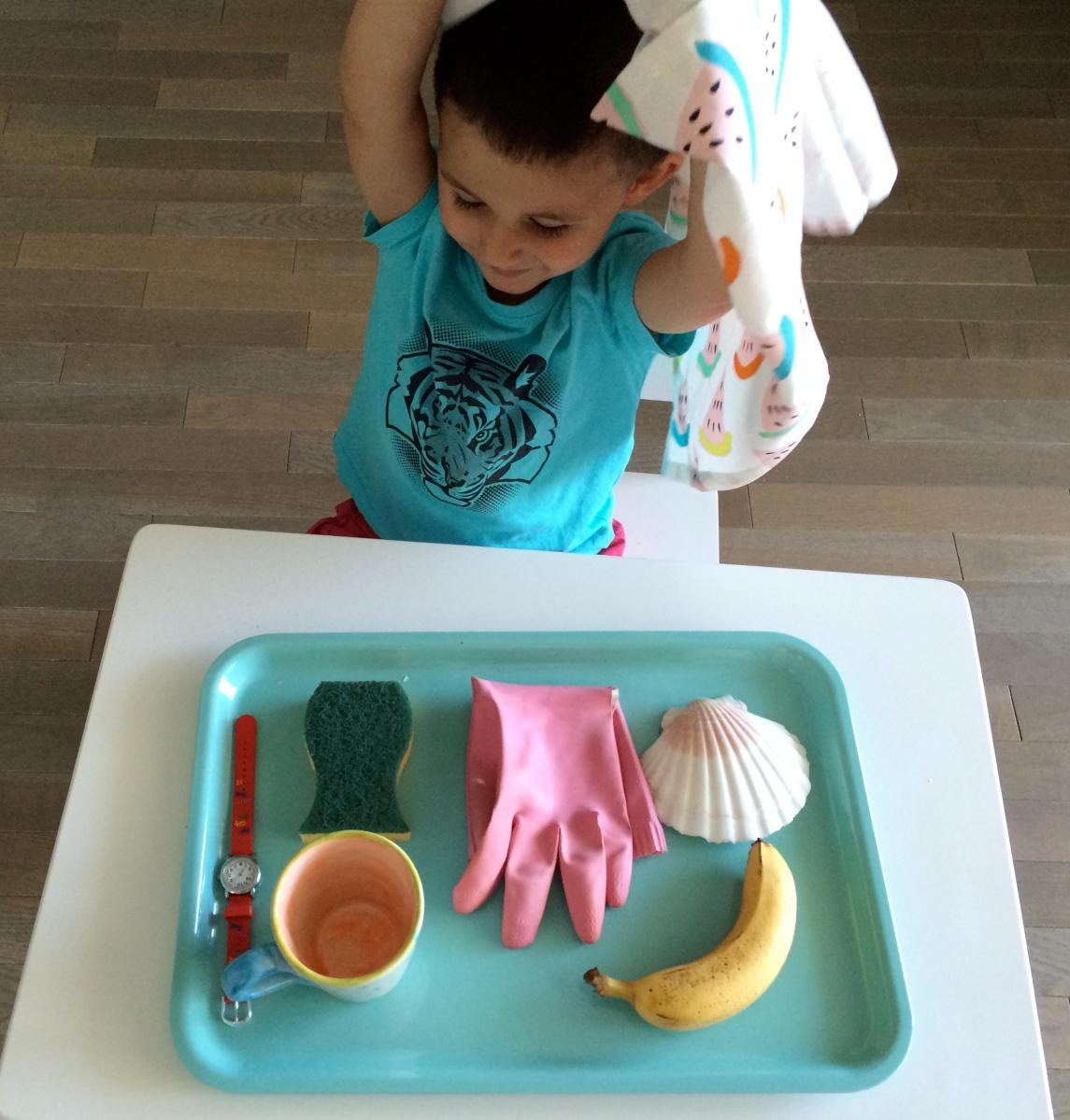 L'Activité Montessori du Jour : le jeu de Kim