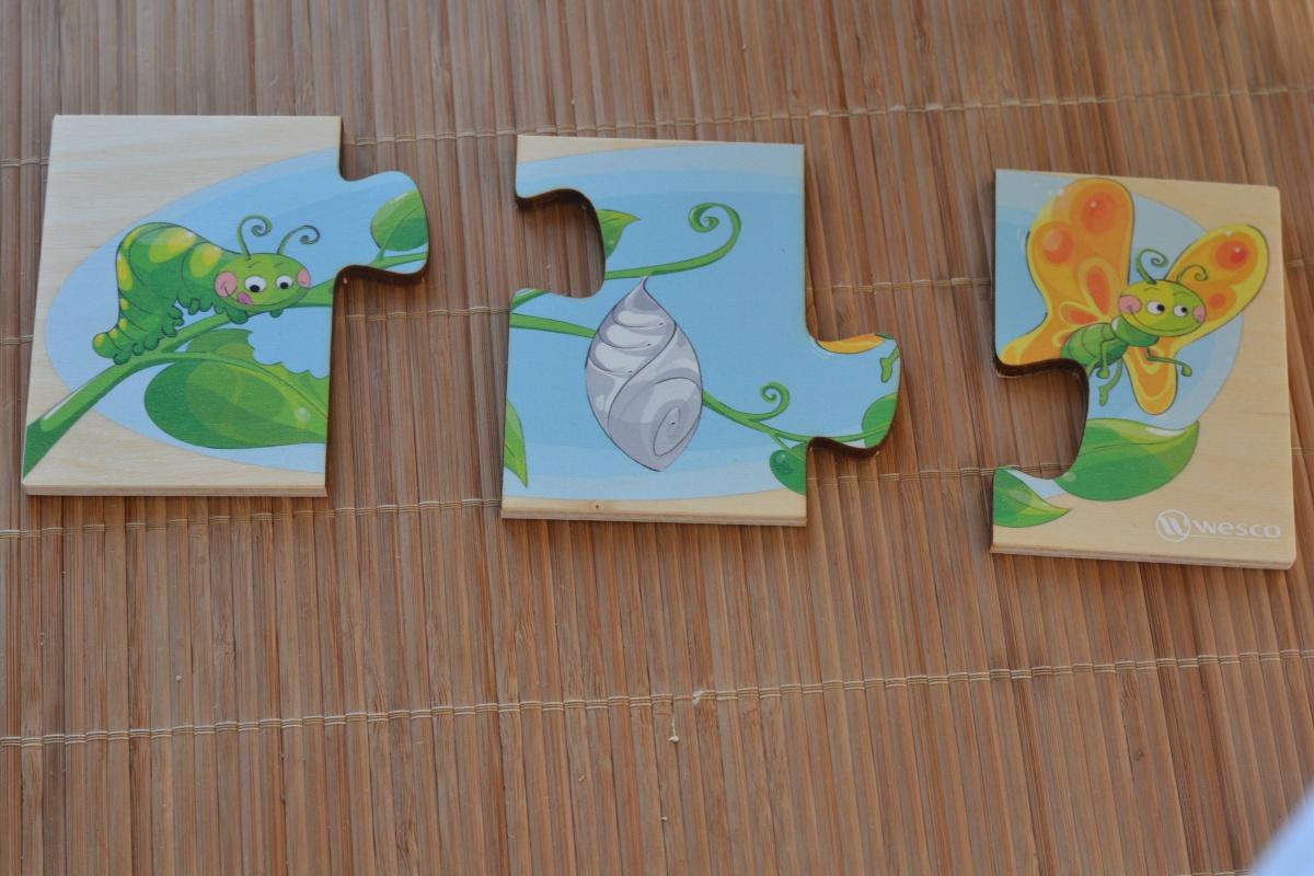 L'activité Montessori du Jour : Puzzles séquentiels